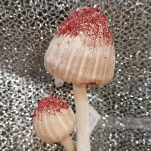 suspension champignons
